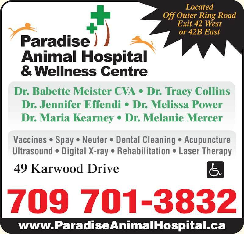Paradise Animal Hospital (709-782-1107) - Display Ad - Dr. Jennifer Effendi ? Dr. Melissa Power Dr. Maria Kearney ? Dr. Melanie Mercer www.ParadiseAnimalHospital.ca 709 701-3832 49 Karwood Drive Located Off Outer Ring Road Exit 42 West or 42B East Vaccines ? Spay ? Neuter ? Dental Cleaning ? Acupuncture Ultrasound ? Digital X-ray ? Rehabilitation ? Laser Therapy Dr. Babette Meister CVA ? Dr. Tracy Collins