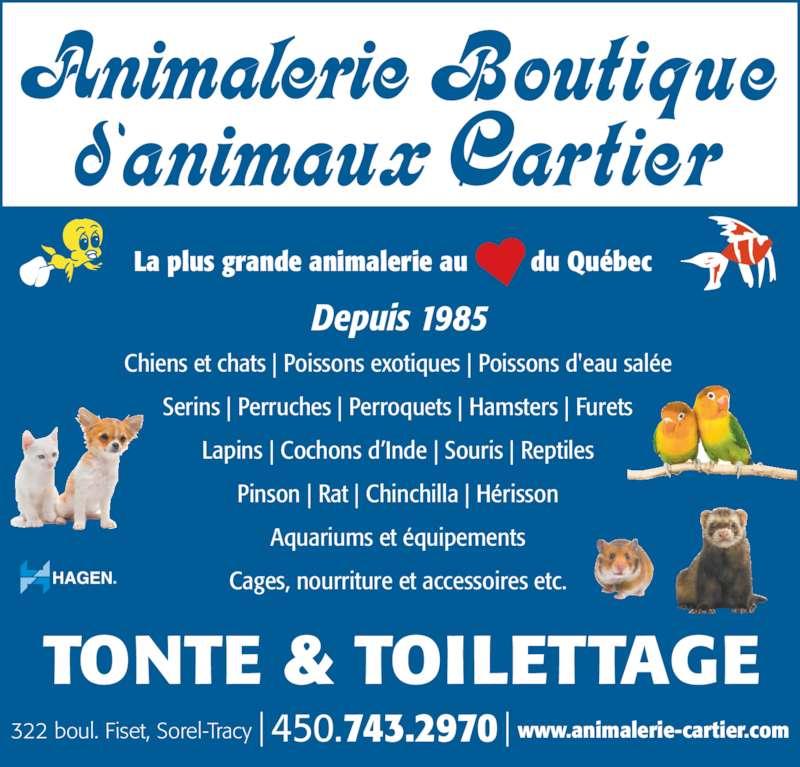 Animalerie Boutique Cartier - Horaire d'ouverture - 322
