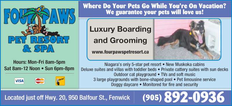 Four paws pet resort fenwick on 950 balfour st rr 5 for 5 paws hotel salon