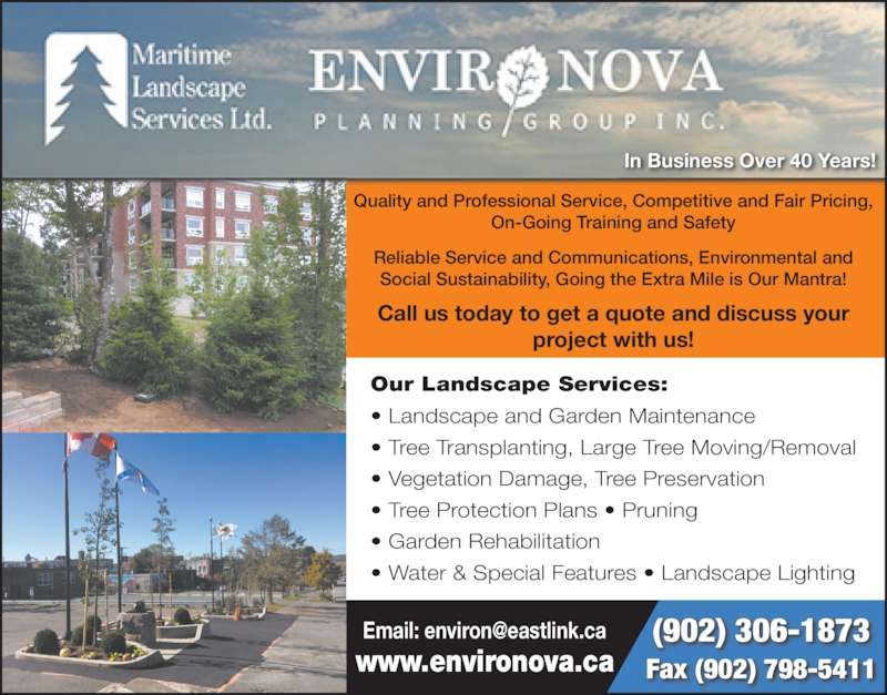 tree removal business plans