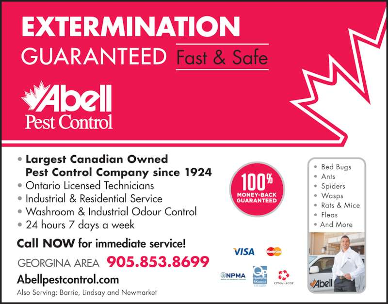 Abell Pest Control (905-853-8699) - Display Ad -