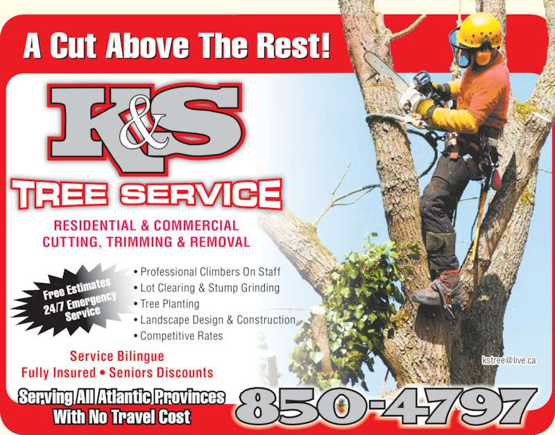 K s tree service canpages for A cut above grooming salon