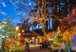 10 magical places in Vancouver to see Christmas lights this holiday season