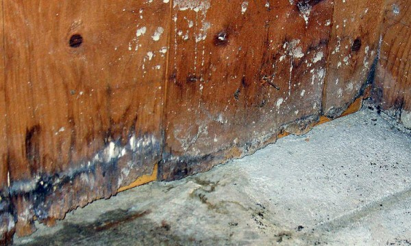 Protect against water damage with a few easy tips