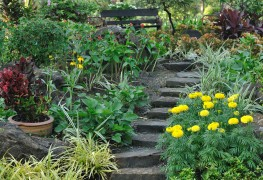 10 pointers for building outdoor steps