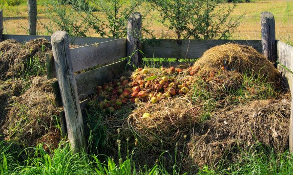 10 tips for creating the perfect compost