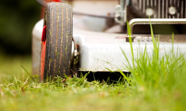Expert tips for buying a lawn mower