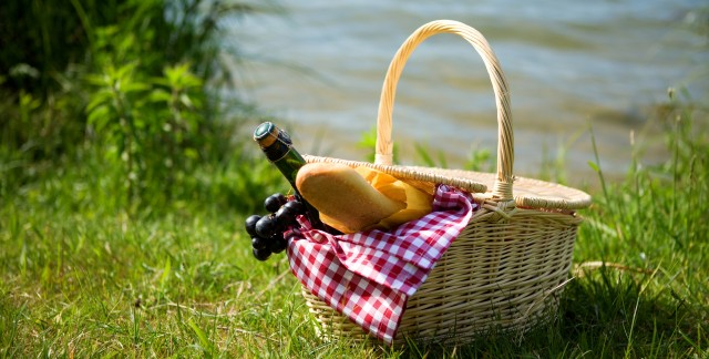 The 3 don'ts of a successful picnic