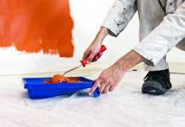 Painting a wall: the basics