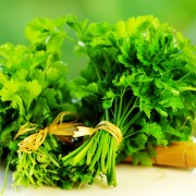 Your complete guide to homegrown herbs: C to F