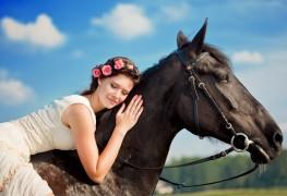 Preparing a horse for a ride