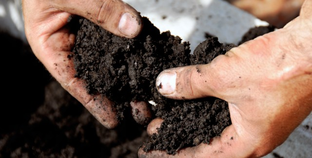 2 things to consider when testing garden soil