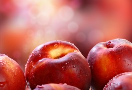 How to grow mulberries, nectarines and oranges