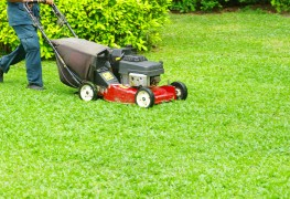 A mowing pro's guide to creating a beautiful lawn