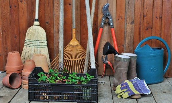 The 5 gardening tools every gardener needs