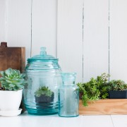 13 pointers on watering and cleaning your houseplants