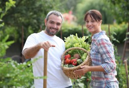Choosing the right vegetables for your garden