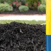 Improving soil with soil amendments