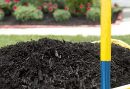 Improving soil with soil amendments