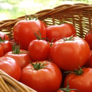 A guide to understanding and cooking with tomatoes.