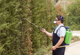 6 pointers for responsible use of insecticides