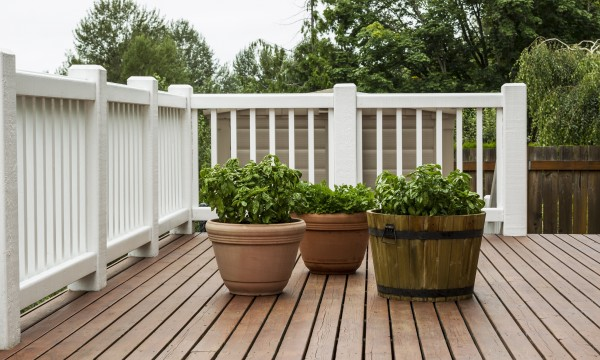 Design And Build A Green Patio Or Deck