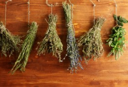 5 easy ways to preserve and dry your own herbs
