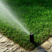 4 simple strategies for watering your lawn and garden