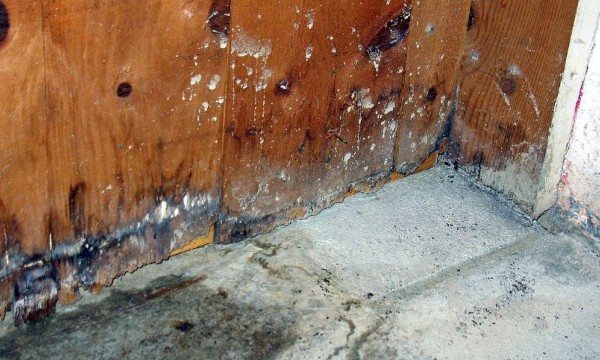 Best-practices for eliminating basement moisture and water leaks
