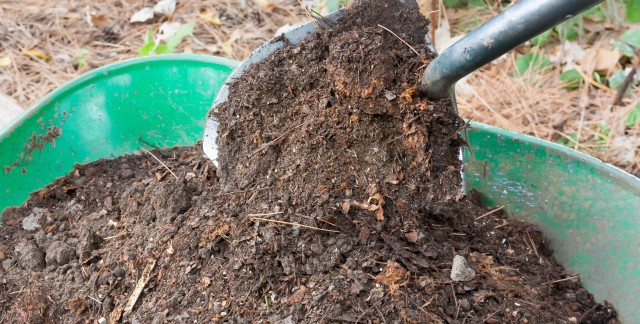 7 composting issues and how to correct them