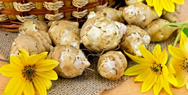 Magic foods for better blood sugar:  Jerusalem artichokes