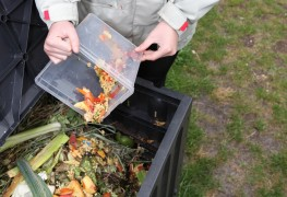 Tips to speed up decomposition in your compost pile