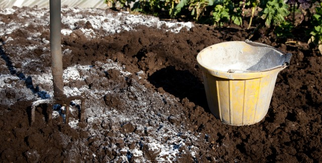 Inexpensive ways to improve your garden's soil