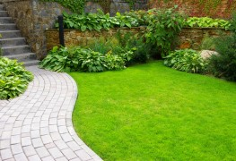 Where to start with your home's landscaping