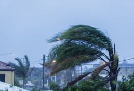 Top tips for staying safe during a hurricane