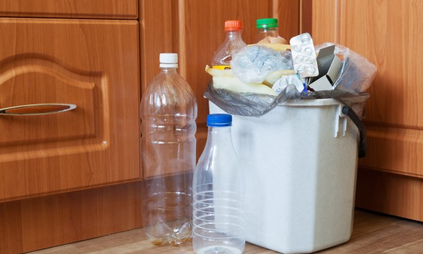 6 ways to control kitchen pests and garbage scavengers