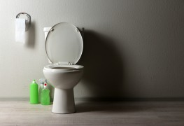 Easy Fixes for Leaky Toilets
