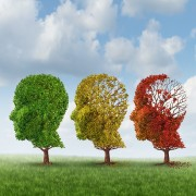 New thinking about memory loss