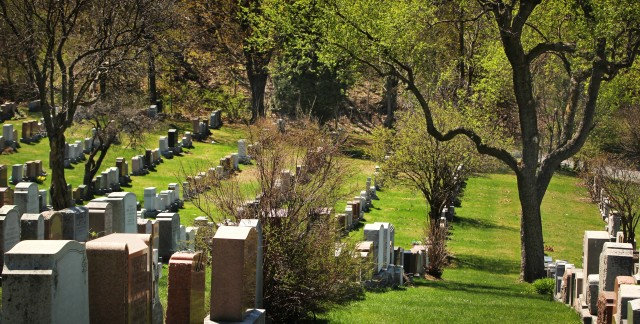 What are some alternatives to burial and cremation services?