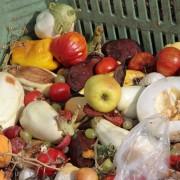 Get kids into composting