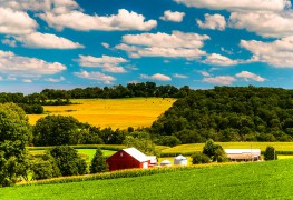 Buying a rural property: how to check the land and neighbours