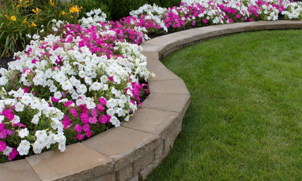 how to plant annuals in the edges of your flower beds smart tips. Black Bedroom Furniture Sets. Home Design Ideas
