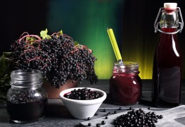 Elderberry: a magical medicinal plant