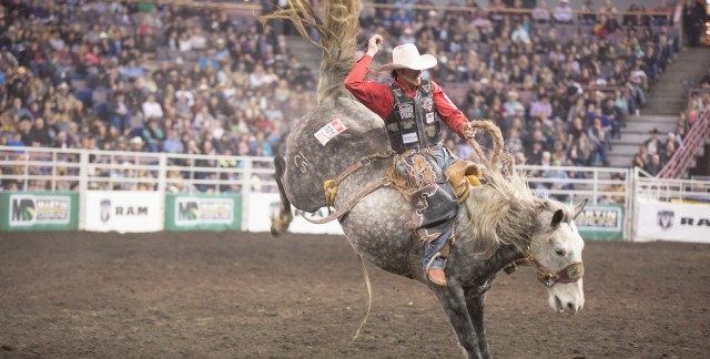Celebrate rodeo season in Edmonton at Canadian Finals Rodeo