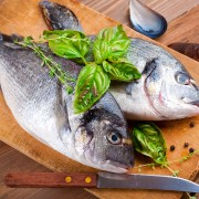 A nutritious guide to understanding the health benefits of fish