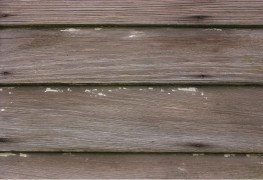 5 simple steps for repairing damaged wood siding