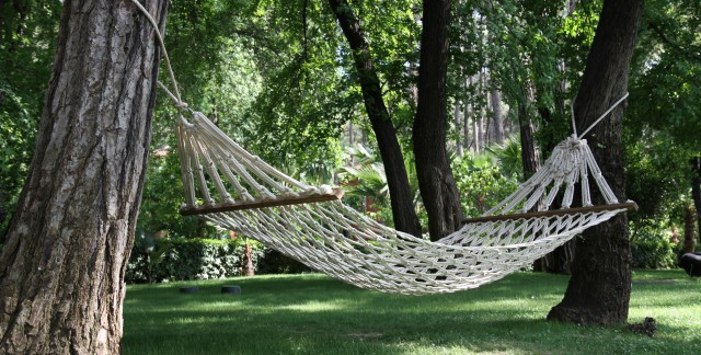 Master the art of net and hammock making
