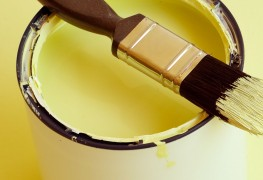 An expert guide to paints and finishes