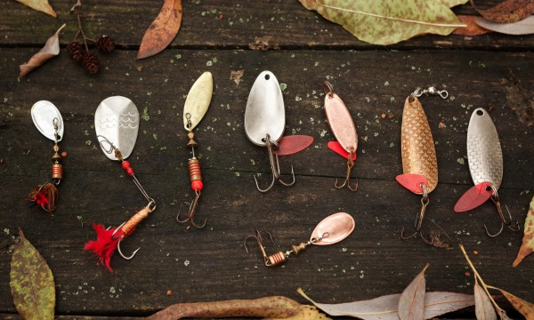 The best baits to use when freshwater fishing smart tips for Best bait for freshwater fishing