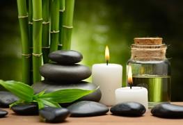 3 main characteristics of Ayurveda medicine